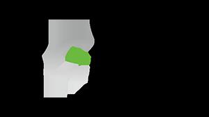 ビージーフリー株式会社